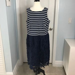 Taylor Woman Dress from Nordstrom NWOT